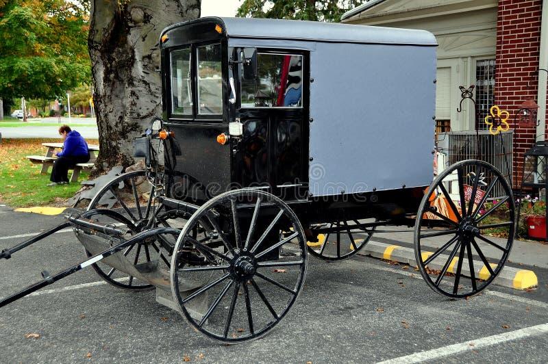 ręka, PA: Parkujący Amish powozik obrazy royalty free
