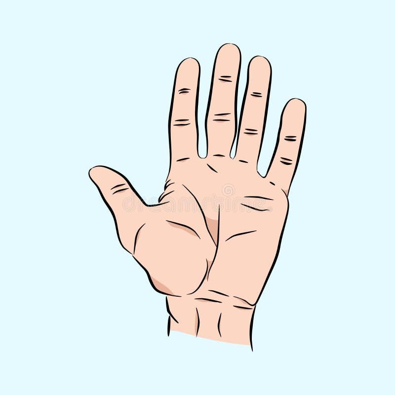 Ręka rozciągał out pięć palców Szczotkarska ludzka męska ręka w nakreślenie stylu, koloru wektoru ilustracja royalty ilustracja