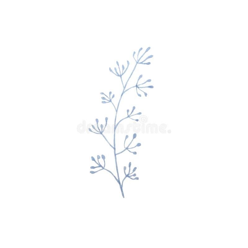 Ręka rysująca akwareli wiosny błękitna gałązka royalty ilustracja