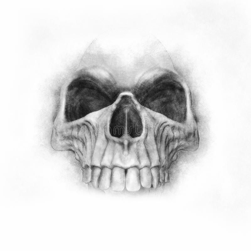 Ręka rysująca czaszka - grafit royalty ilustracja