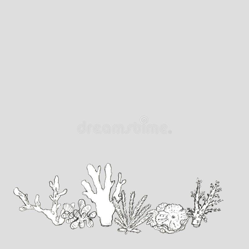 Ręka rysująca denna koral karta ilustracja wektor