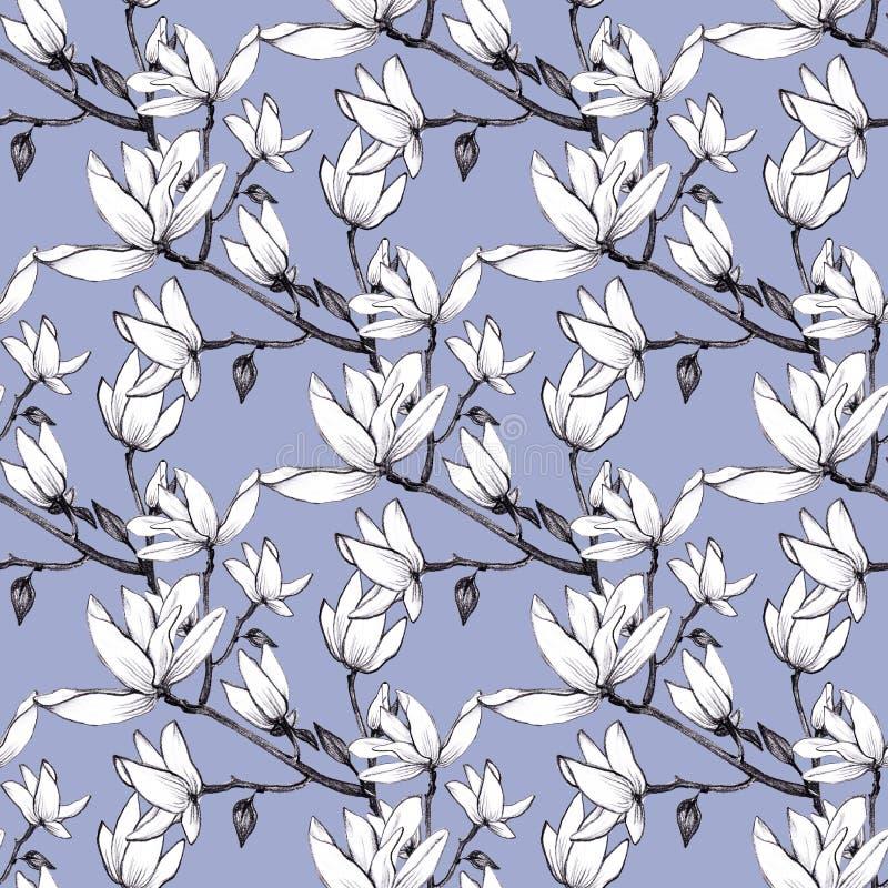 Ręka rysująca deseniowa bezszwowa magnolia kwitnie na błękitnym tle ilustracji