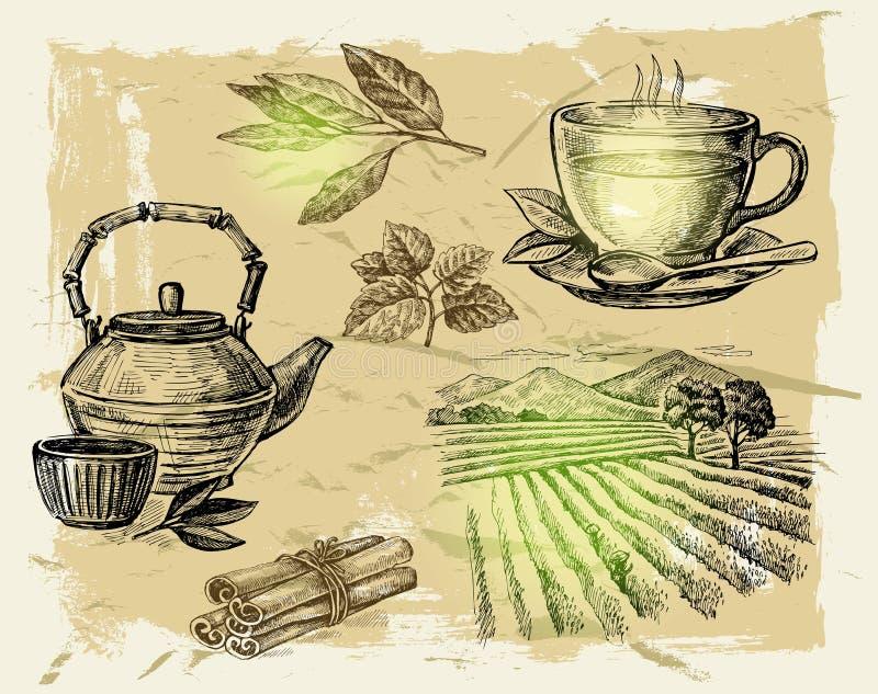 Ręka rysująca herbata ilustracji