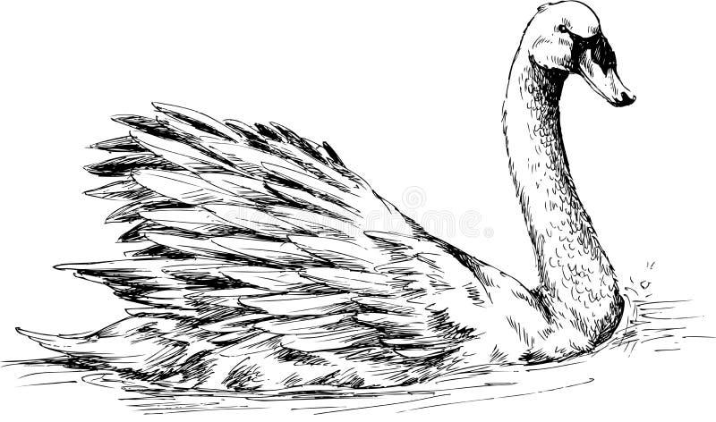 Ręka rysująca kaczka ilustracji