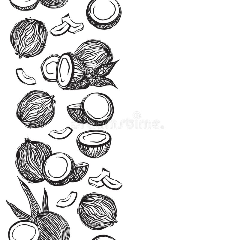 Ręka rysująca koksu konturu nakreślenia pionowo granica Wektorowego czarnego atramentu coco rysunkowe owoc Graficzna ilustracja,  royalty ilustracja