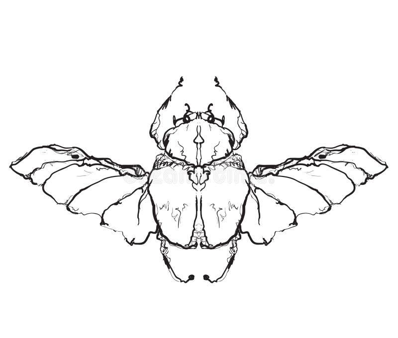 Ręka rysująca lata insekta ilustracji