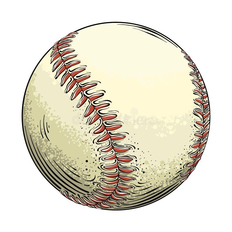 Ręka rysująca nakreślenie baseballa piłka w kolorze, odosobnionym na białym tle Szczegółowy rysunek w stylu rocznika wektor ilustracji
