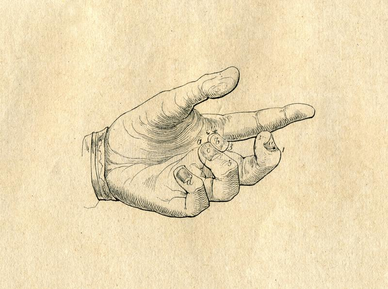 Ręka rysująca ręka rocznika rysunek grawerująca ilustracja ilustracja wektor