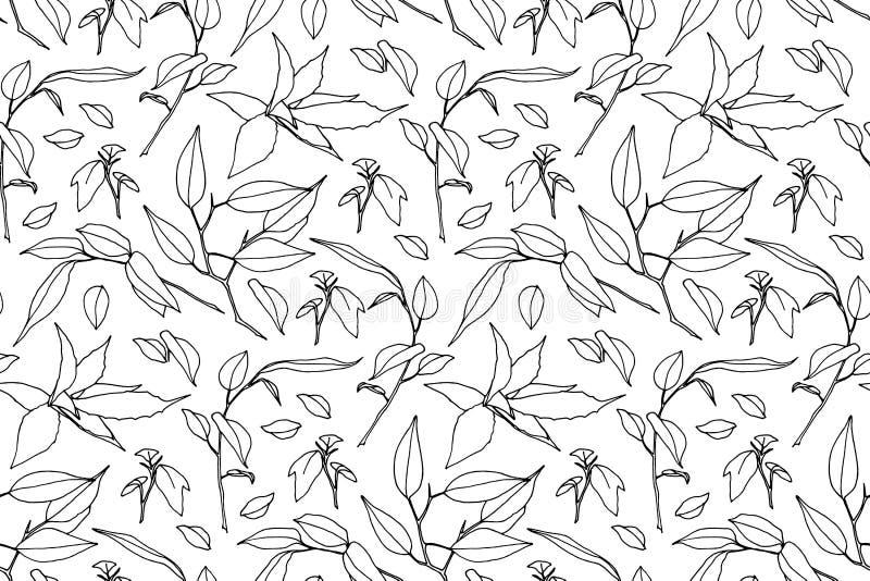 Ręka rysująca rozgałęzia się z liścia bezszwowym wzorem Kontur dzikie rośliny malować atramentem Wektorowy nowożytny botaniczny n ilustracja wektor