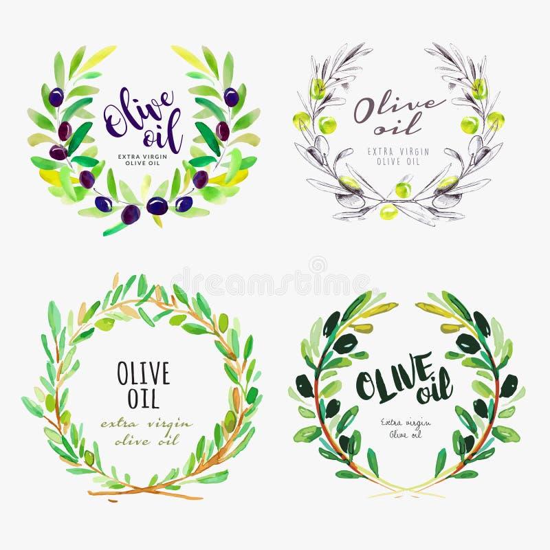 Ręka rysujący akwarela elementy oliwa z oliwek ilustracja wektor