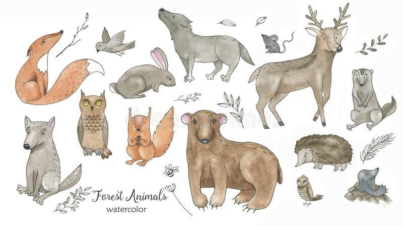 Ręka rysujący akwareli kreskówki doodle zwierzęcia se royalty ilustracja