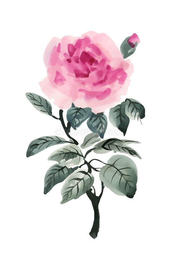 Ręka rysujący akwareli menchii kwiat odizolowywający na białym tle ilustracji