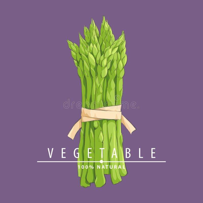 Ręka rysujący asparagus ilustracja wektor