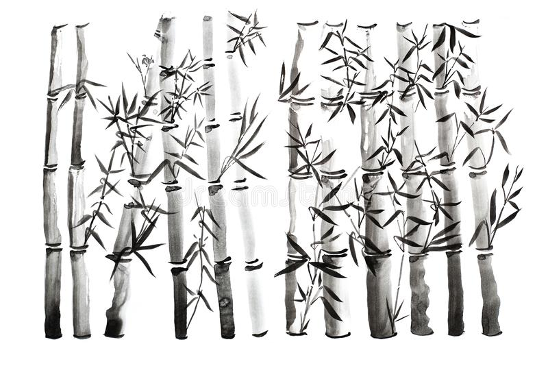 Ręka rysujący bambusów liście i gałąź set, atramentu obraz Tradycyjny suchy kaligraficzny szczotkarski obraz pojedynczy białe tło fotografia stock