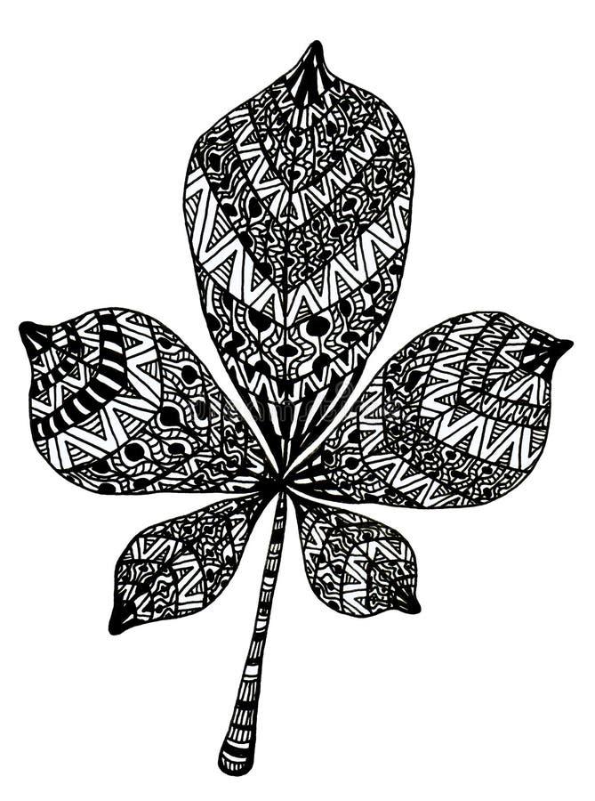 Ręka rysujący cisawy liść royalty ilustracja