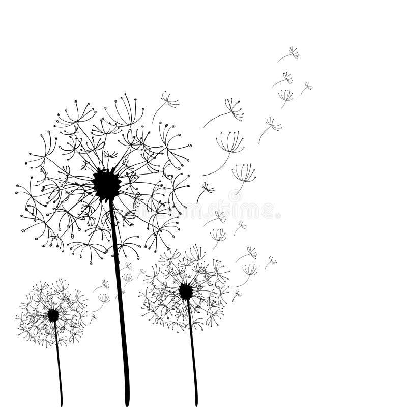 Ręka rysujący dandelion odizolowywający royalty ilustracja
