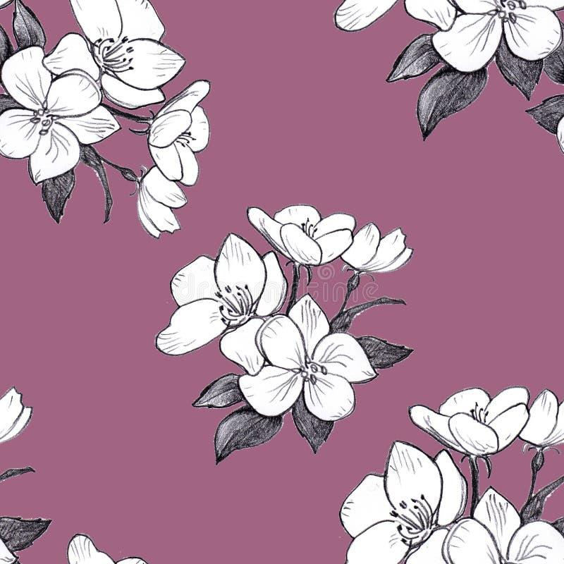 Ręka rysujący deseniowi bezszwowi jabłczani kwiaty na zmroku różowią tło ilustracji