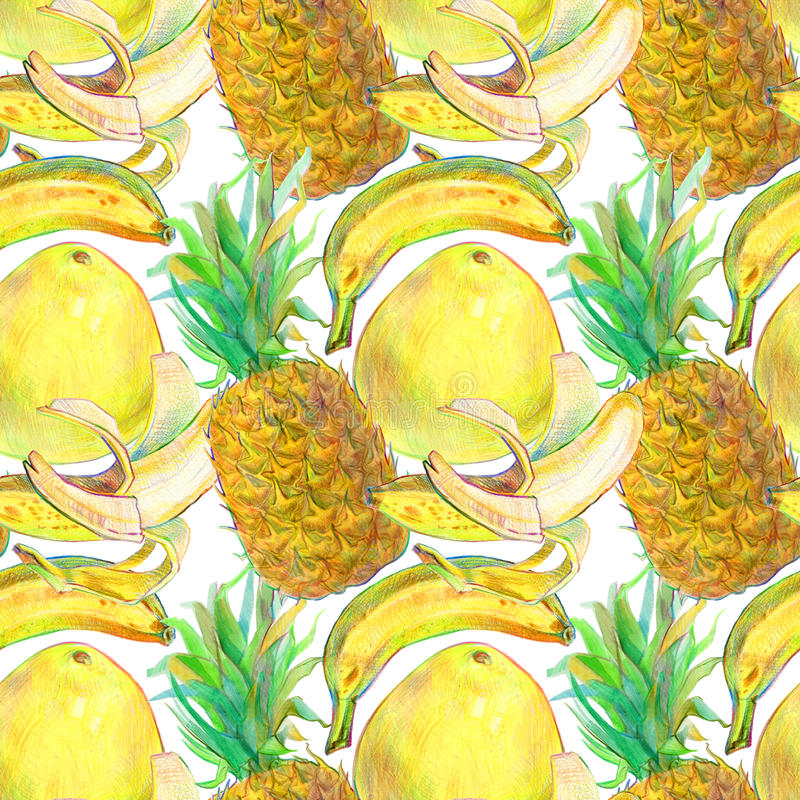 Ręka rysujący egzotyczny tropikalnych owoc bezszwowy wzór royalty ilustracja