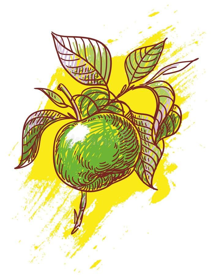 Ręka rysujący jabłko royalty ilustracja