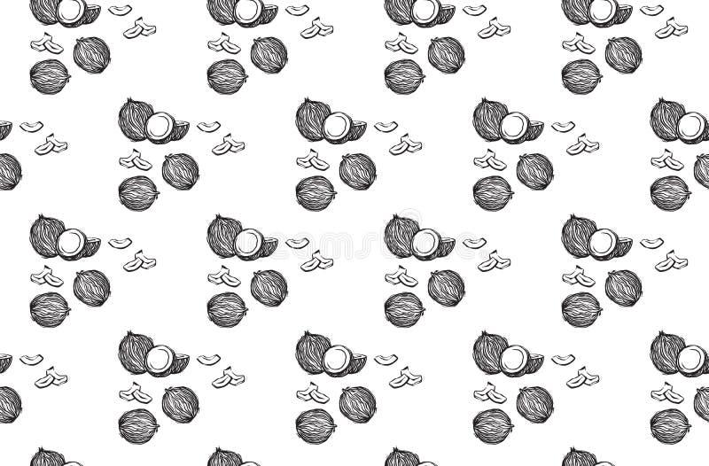Ręka rysujący koksu konturu bezszwowy wzór Wektorowego czarnego nakreślenie atramentu coco rysunkowe owoc Graficzna ilustracja, o royalty ilustracja