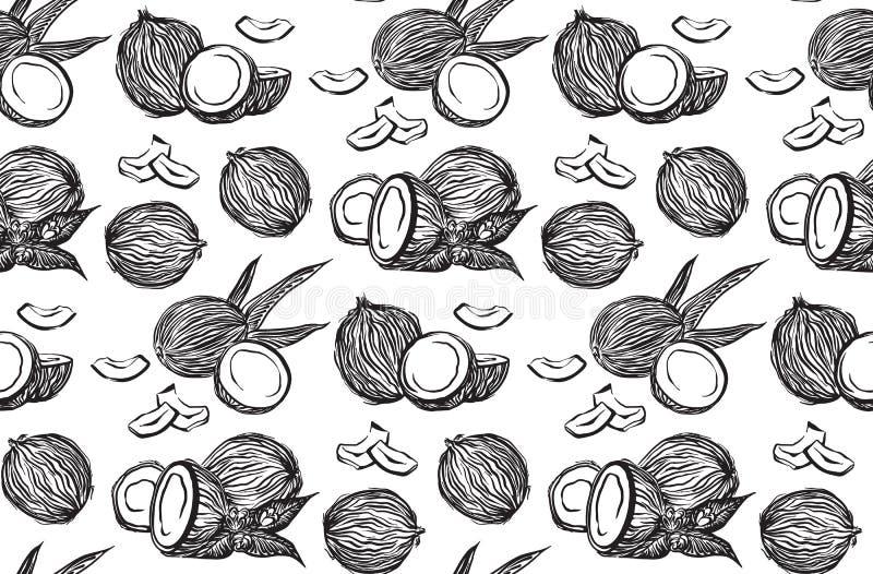 Ręka rysujący koksu konturu nakreślenia bezszwowy wzór Wektorowego czarnego atramentu coco rysunkowe owoc Graficzna ilustracja, o ilustracji