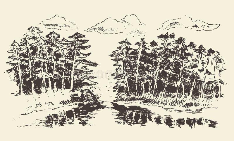 Ręka rysujący krajobrazowy jeziora i jodła lasu wektor ilustracji