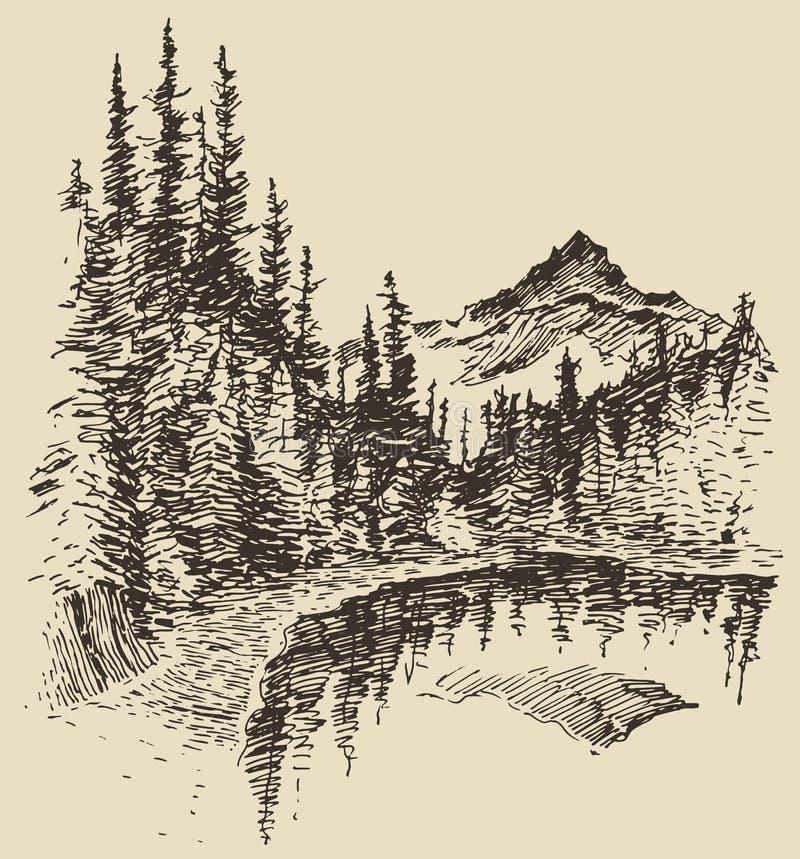 Ręka rysujący krajobrazowy jeziora i jodły lasowy nakreślenie royalty ilustracja