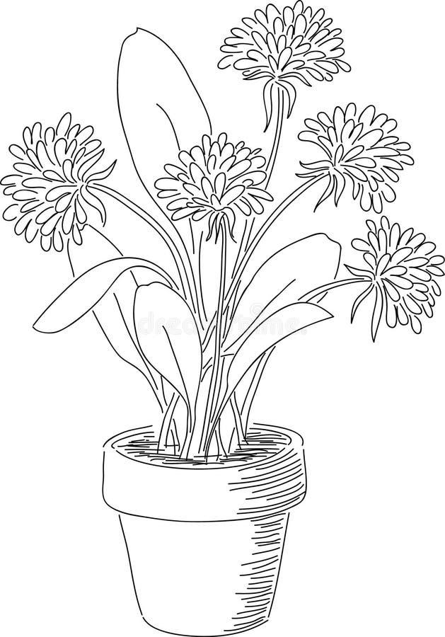 Ręka rysujący kwiaty ilustracja wektor