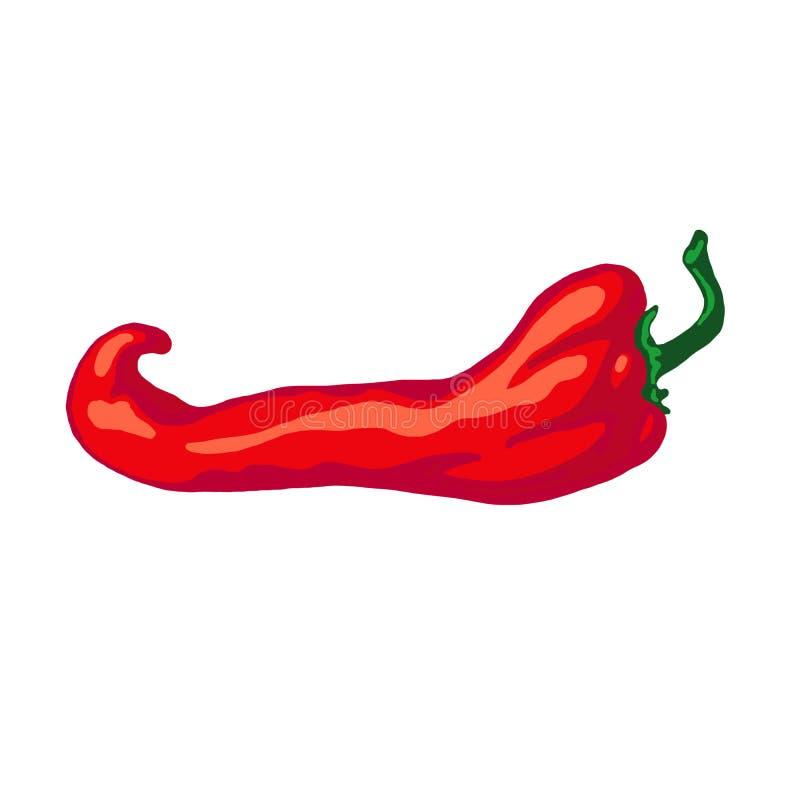 Ręka rysujący nakreślenia chili gorący pieprz, odosobniony na białym tle royalty ilustracja