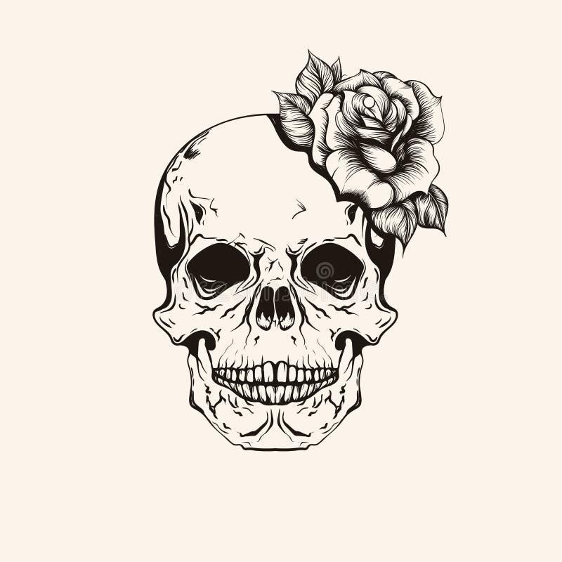 Ręka rysujący nakreślenia scull z róża tatuażu kreskową sztuką Rocznika vecto ilustracji