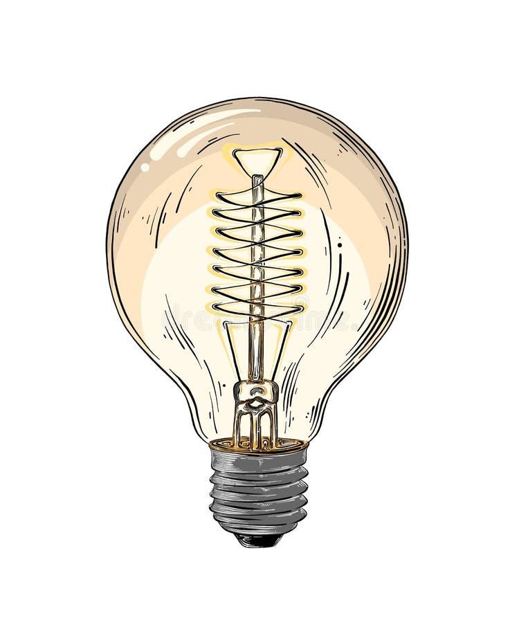 Ręka rysujący nakreślenie lightbulb w kolorze odizolowywającym na białym tle Szczegółowy rocznika stylu rysunek wektor royalty ilustracja