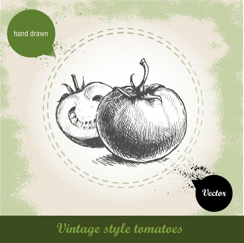 Ręka rysujący nakreślenie stylu pomidory na grunge rocznika tle ilustracja wektor
