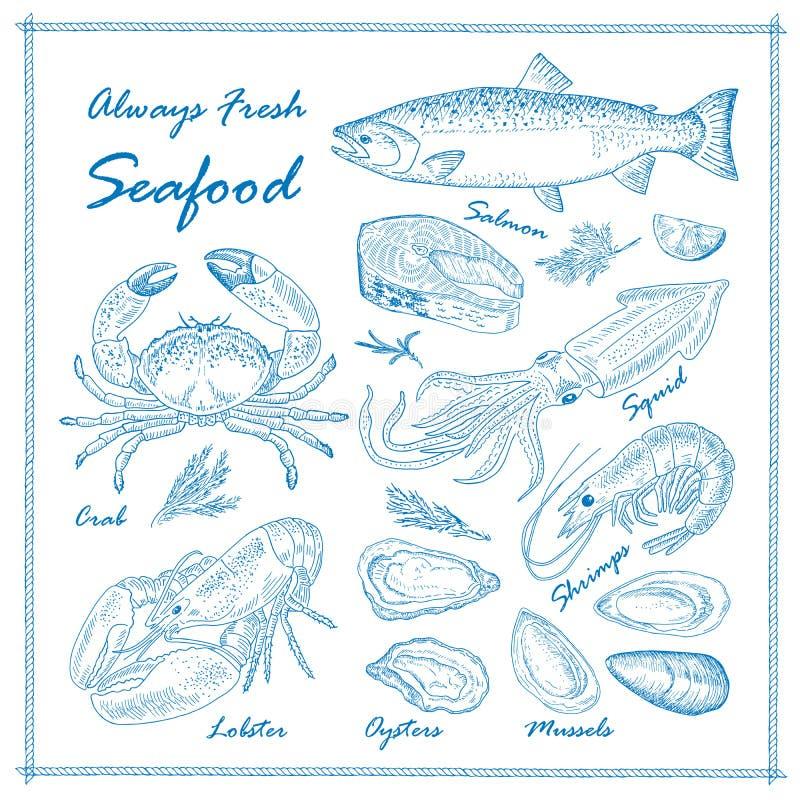 ręka rysujący owoce morza ilustracja wektor