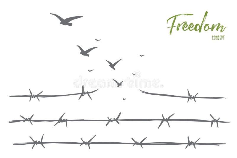 Ręka rysujący ptaki lata nad łamanym drutem kolczastym ilustracji