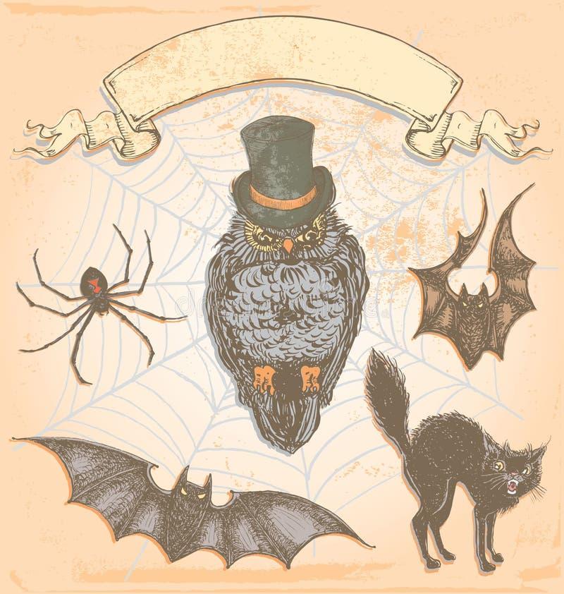 Ręka Rysujący rocznik sowy wektoru Halloweenowy Straszny set royalty ilustracja