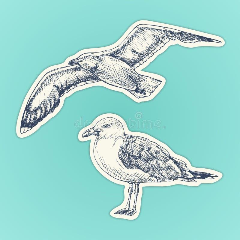 Ręka rysujący seagull Morski ptak również zwrócić corel ilustracji wektora ustawia majcherów ilustracja wektor