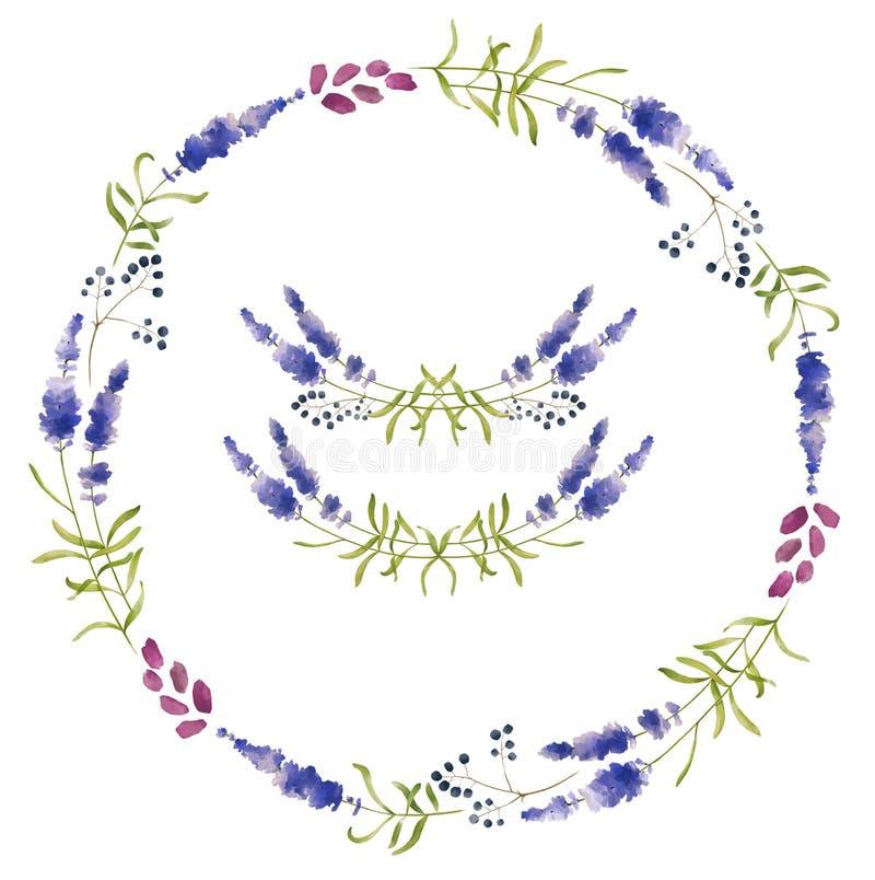 Ręka rysujący set lawendowi kwiaty, wianki i dekoracja elementy, royalty ilustracja