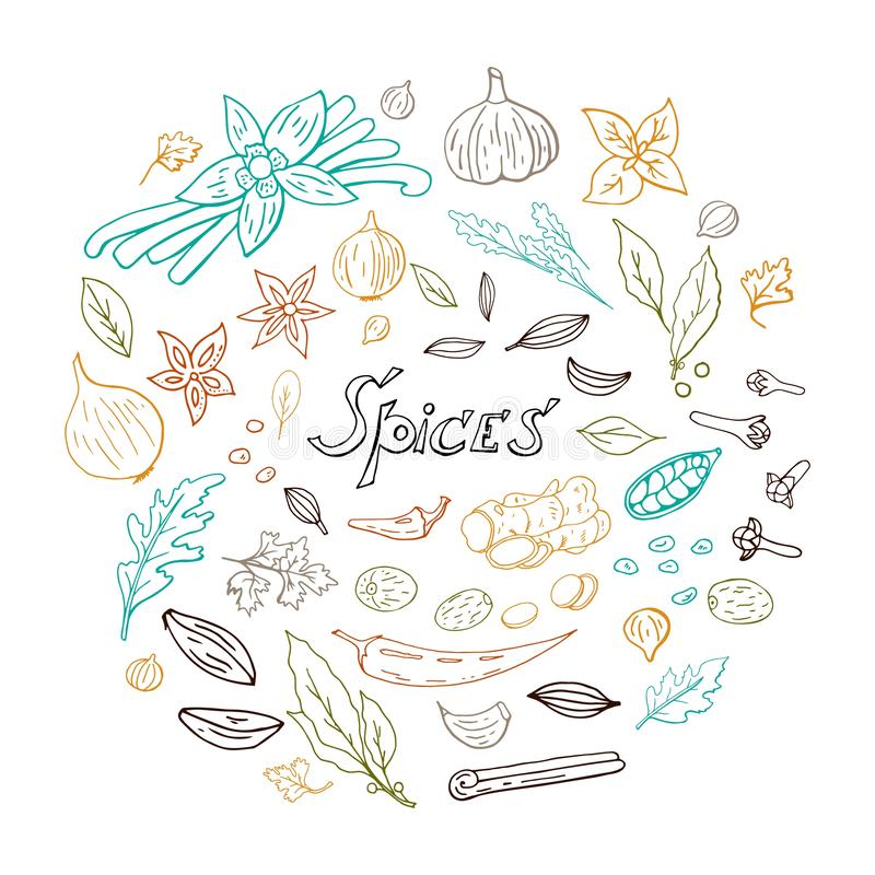 Ręka rysujący set pikantność z z kolorowymi liniami w okrąg przestrzeni odizolowywającej na białym tle, pikantność wektoru kolekc ilustracji