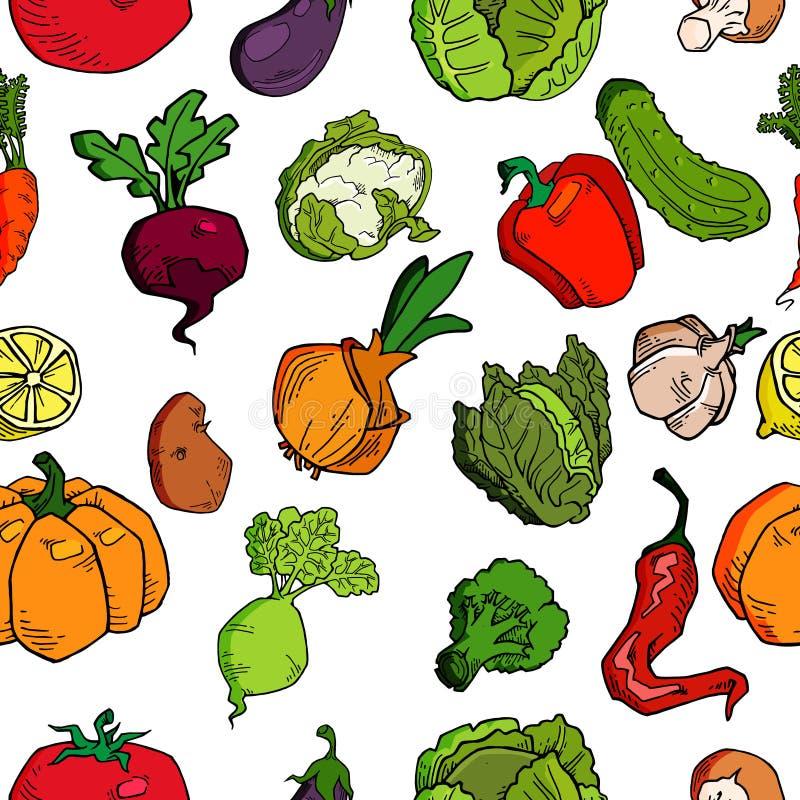 Ręka rysujący warzywo bezszwowy wzór Zdrowy karmowy wektorowy tło ilustracji