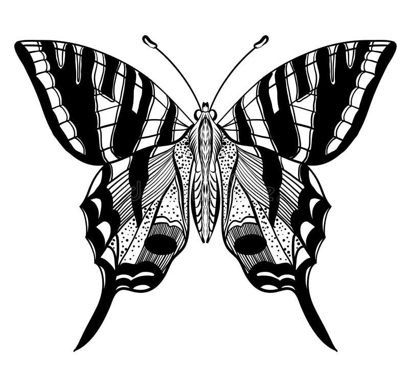Ręka rysujący wektorowy motyl ilustracji