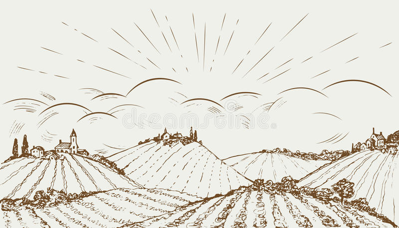 Ręka rysujący wiejski śródpolny panoramiczny szeroki krajobraz Rocznika wektoru ilustracja royalty ilustracja