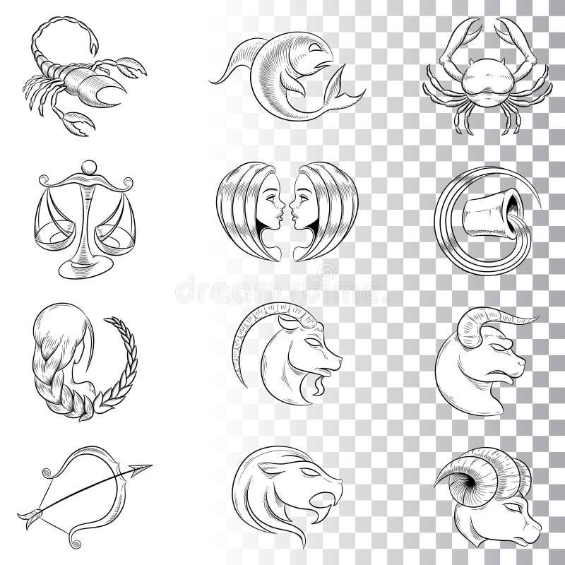 Ręka Rysujący zodiak Podpisuje nakreślenia odizolowywających na Białym tle ilustracji