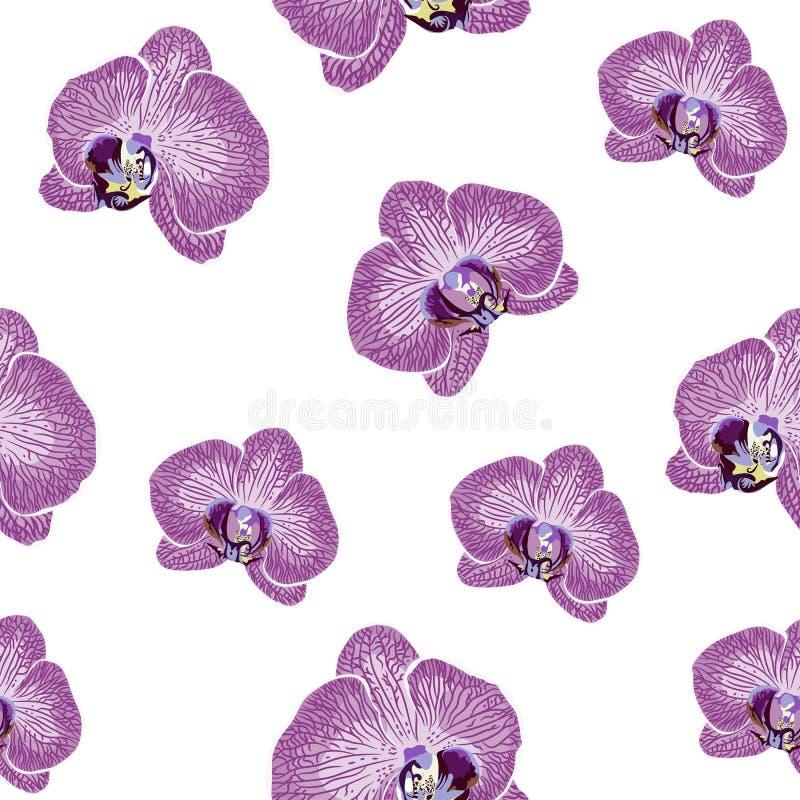 Ręka tonie storczykowych kwiatów bezszwowego wzór Wielostrzałowa tekstura z fiołkowymi kwiatami ilustracji