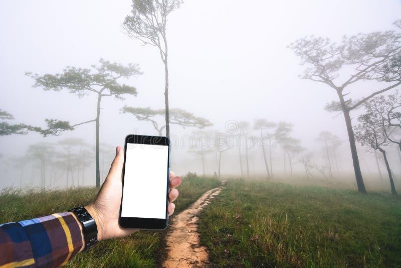 Ręka w modnisia koszulowego mienia pustym smartphone z lasem i f obrazy stock
