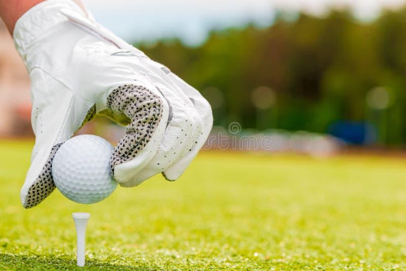 Ręka w piłce golfowej i rękawiczce obrazy stock