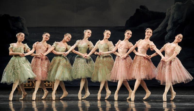 Ręka w rękę baletnicze dziewczyny obraz stock