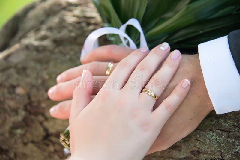 Ręka w rękę z pierścionkami zdjęcie stock