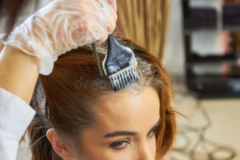 Ręka z szczotkarskim barwiarskim włosy fotografia stock