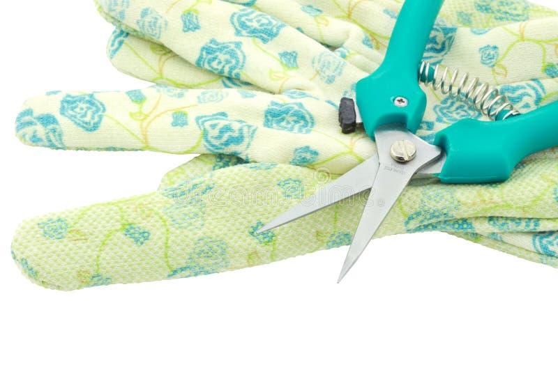 rękawiczek ogrodowi strzyżenia zdjęcie stock