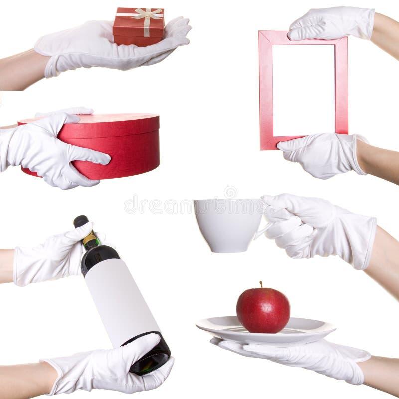 rękawiczka wręcza istota ludzka biel s zdjęcia stock